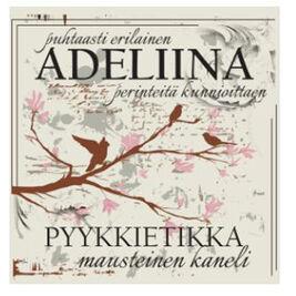 Adeliina Mausteinen kaneli pyykkietikka 500ml