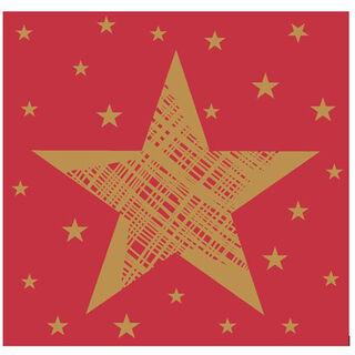 20kpl - Duni Shining Star lautasliina 24cm